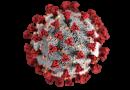 ไวรัสโคโรนา หรือโควิด-19 คืออะไร ?
